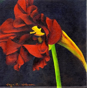 Red Nasturtium © Jana R. Johnson