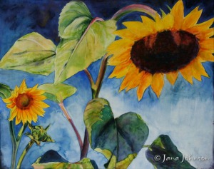 Salient Sunflowers © Jana R. Johnson