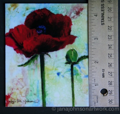 © Jana R. Johnson Poppy and Pod