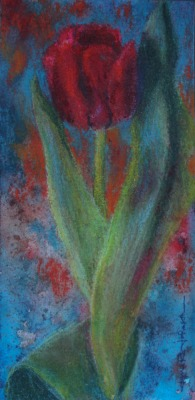 © Jana R. Johnson - Red Tulip 1